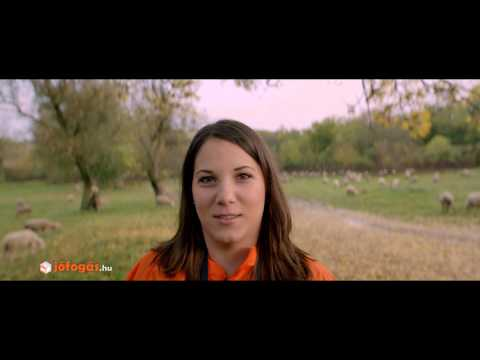 Video of Jófogás.hu