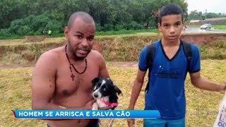 Morador se arrisca para salvar cachorrinha no rio Campestre em Lins