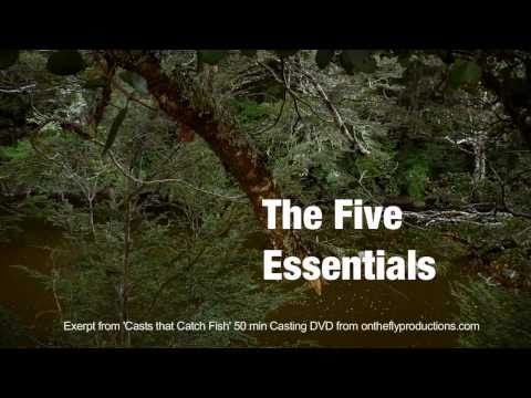 Fly Casting. Bill Gammels 5 Essentials Of Fly Casting, An Introduction.