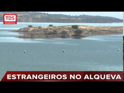 44 INVESTIDORES ESTRANGEIROS VISITARAM ALQUEVA