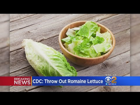 CDC: Throw Out Romaine Lettuce
