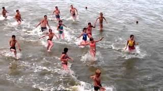 Ромашка, лето 2014 (видео №17)