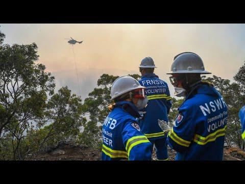 Rund 500 Feuerwehrleute bei Waldbränden im Einsatz