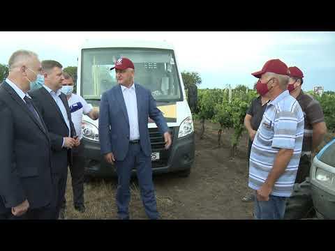 Şeful statului a vizitat podgoriile vinăriei Cricova