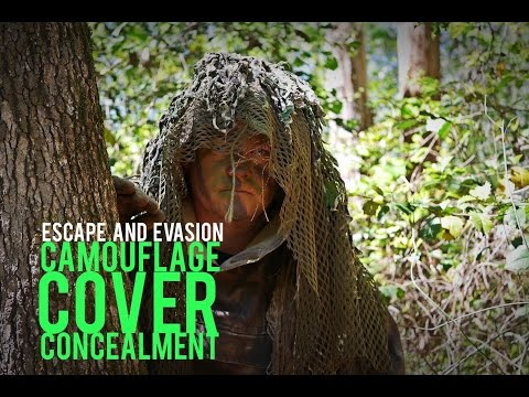 Escape and Evasion: Camouflage, Cover, and Concealment