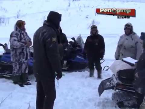 В Похвистневском районе пойман браконьер, убивший годовалого лося (видео)