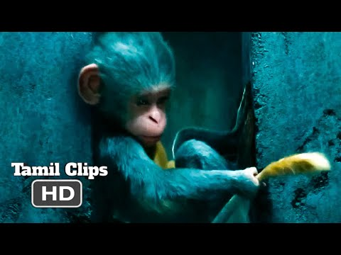 Dora And The Lost City Of Gold (2019) - Monkey Help Scene Tamil [11/12] | MovieClips Tamil