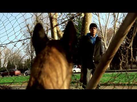 BETAFENCE България - Оградни системи