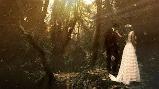 Portaria Greece  city photos : Cinematic Wedding Clip Pilio Portaria Greece