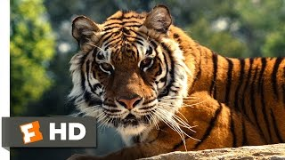 Nonton We Bought A Zoo  2 3  Movie Clip   Yelling Down The Tiger  2011  Hd Film Subtitle Indonesia Streaming Movie Download