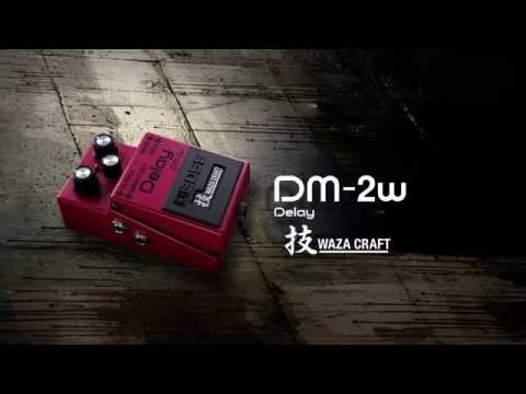 BOSS DM-2W Delay Sound Preview