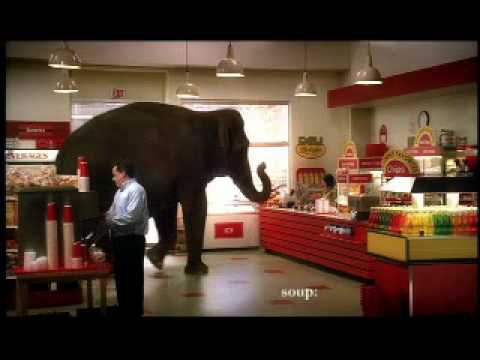 syoneda: The Elephant and The Credit Card