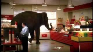 Mastercard Priceless Elephant - YouTube