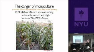 Natural Science II: Genomes And Diversity - GMOs And Society