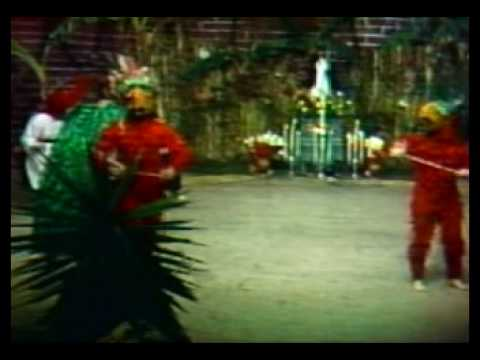 Baile de Los Guacamayos (El Paabanc)