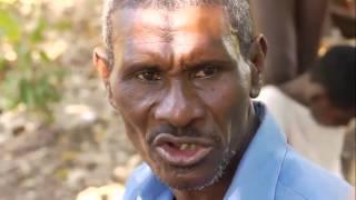 World Bank-UNICEF Community Health Project In Haiti