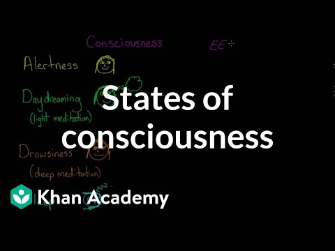 States Of Consciousness Video Khan Academy