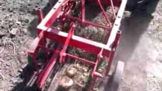 Мотор Сич и каменская ГКК, копка картофеля 2011.3gp