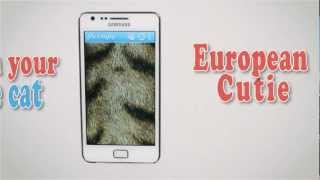 Purrapy Fluffy Live Wallpaper YouTube video