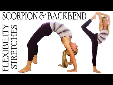 exercises - Exclusive Content For Supporters http://www.patreon.com/psychetruth Flexibility Stretch Exercises Workout for Scorpion & Back Bends For Ballet, Dance & Cheerleading In this video, Donnie...