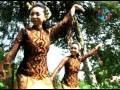 Didi Kempot - Nyangking Botol (Official Video Lyric)