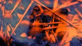 Video Šamani pred kapijama