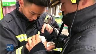 ペットショップで火災が発生 動物たちを全力で救った消防士に称賛の声