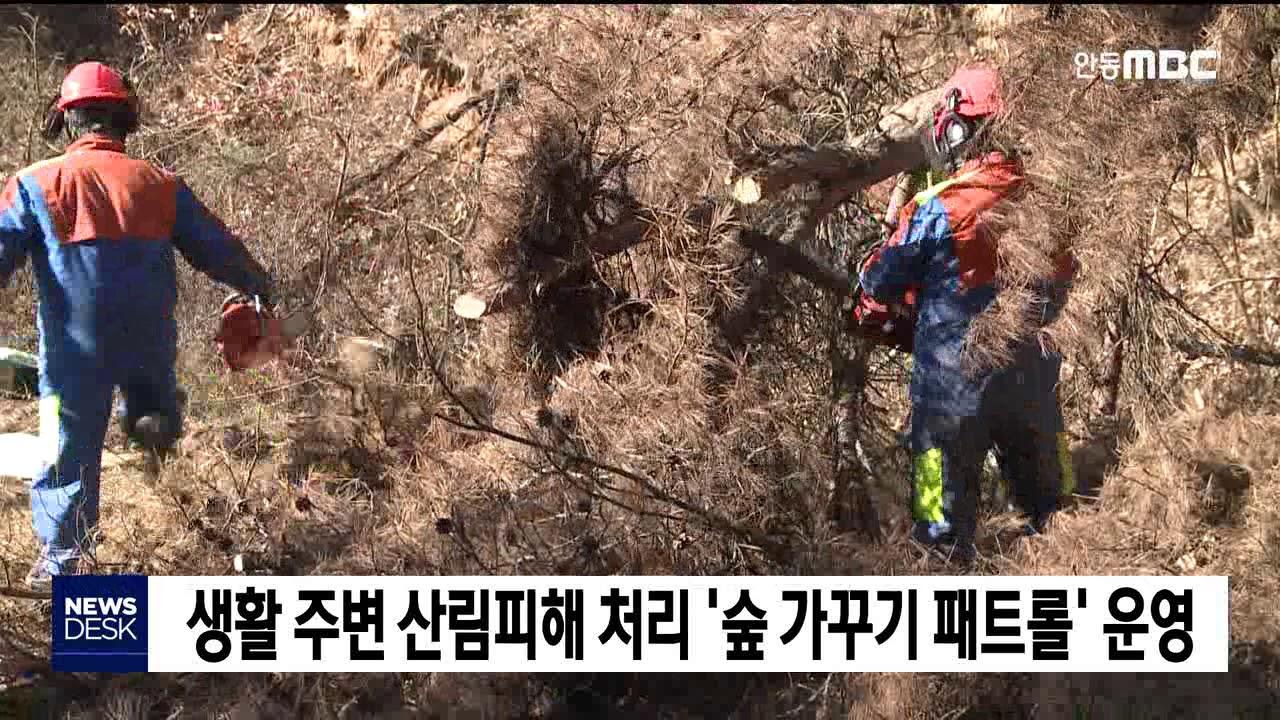 생활 주변 산림피해 처리 '숲 가꾸기 패트롤' 운영
