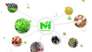 M Nông nghiệp: Kênh thông tin chuyên biệt về nông nghiệp