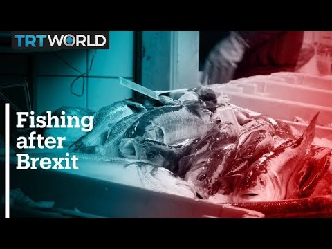 Fishing rights after Brexit