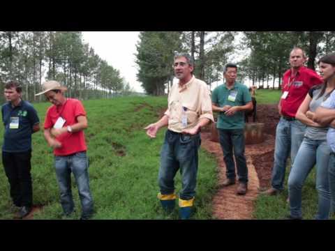 Visita de Campo Projeto Rural Sustentável - Condomínio Pizzolato - Saudade do Iguaçu - PR