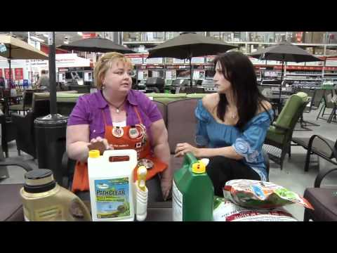 Home Depot: Eco-Friendly Products
