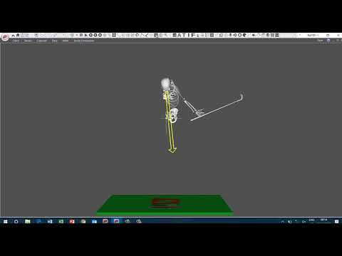 Realtime head and ribcage tracking