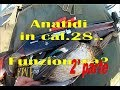 CACCIA: Anatidi in calibro 28 -2° parte