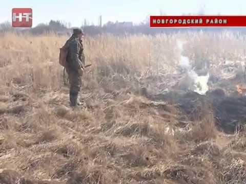 В области начала гореть трава
