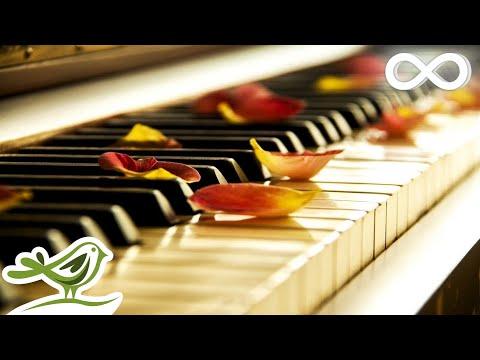 Relaxing Piano Music: Sleep Mu …