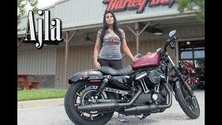 7. 2017~2019 Harley-Davidson Iron 883 Sportster  for sale in Brandon