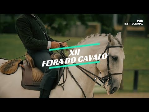 Visite a XII Feira do Cavalo de Ponte de Lima