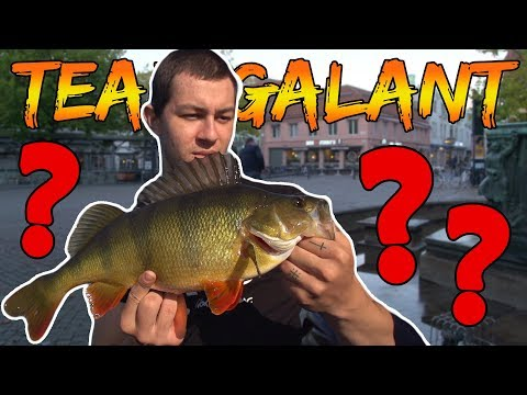 PENALTY FISHING - SMALLEST PERCH MUST FISH IN A FOUNTAIN | Team Galant