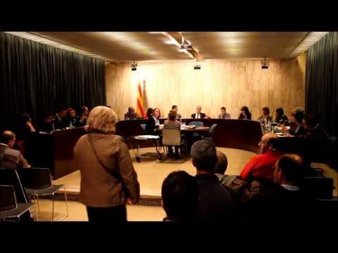 Ple 18/11/2013, Ajuntament de Salt