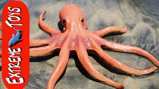 The Octopus Stow Away! Mysterious Squid Toy Sea Creature on the Beach.