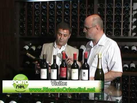 Programa PontoNet com Ricardo Orlandini - 05/02/2010 - Bloco 2