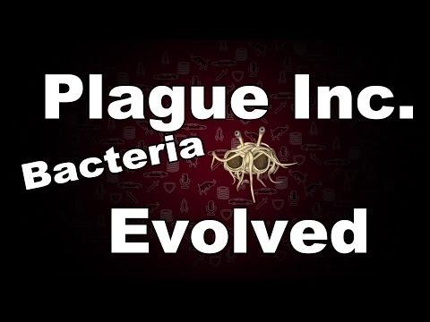 bacterial pcr protocol