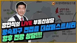 [부동산상담/부동산시장전망] 왕숙지구 진전읍 더샵퍼스트시티 향후 전망 상담