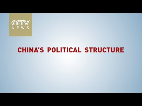 【V观】What are China's NPC & CPPCC?