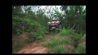 3. CFMOTO Terra Lander X8 Quad ATV 800cc