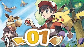 Pokémon Let's Go Pikachu & Eevee - Episode 1 | Pallet Town Homecoming!