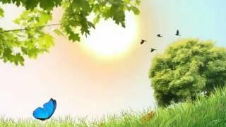 Butterfly Landscape LWP YouTube video