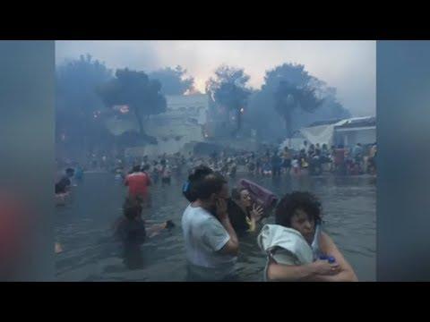 Griechenland: Nach Waldbränden steigt die Zahl der Opfer weiter