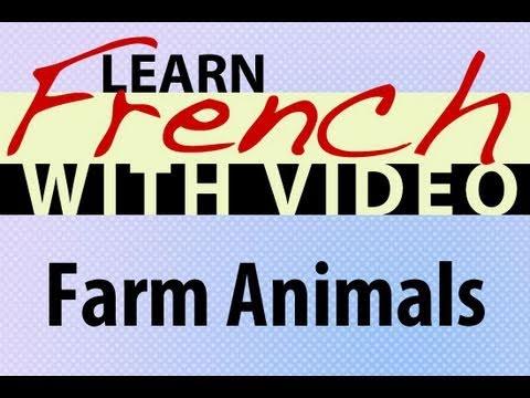 Tiere auf dem Bauernhof - Französisch Vokabeln